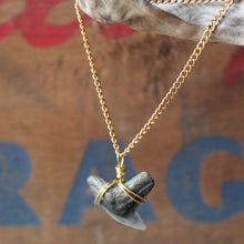 Fossil shark tooth jewelry by RadCakes Manasquan NJ