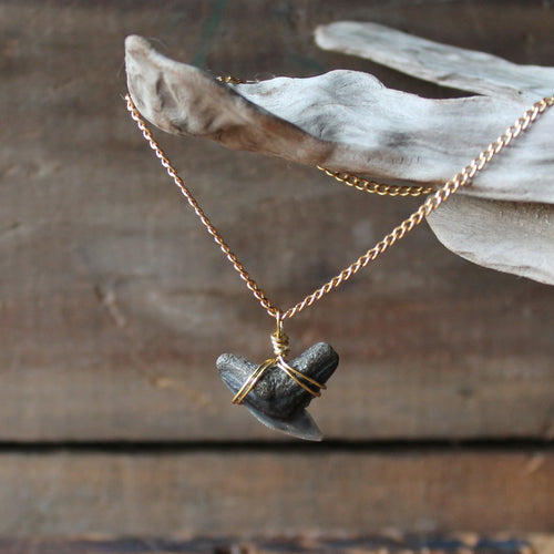 Fossil Shark Tooth necklace for sale by RadCakes. Wire wrapped extinct tiger shark tooth foosil.