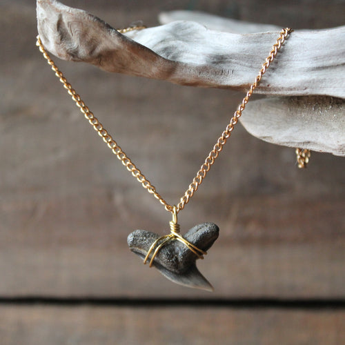 Gold toned fossil shark tooth neckalce by RadCakes fossil jewelry