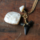Fossil Lemon Shark Tooth and Shell long necklace