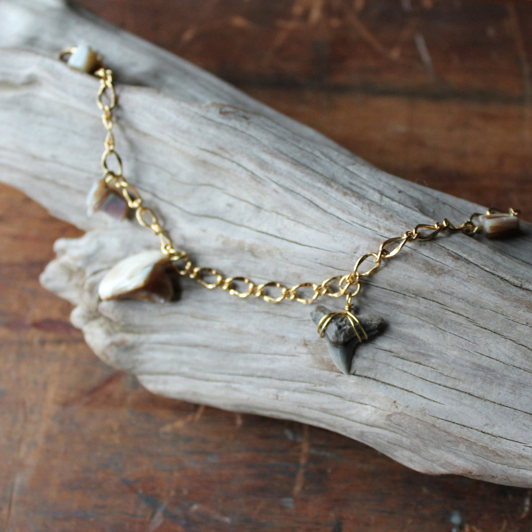 Fossil Tiger Shark Tooth and Shell charm bracelet 002