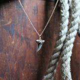 Fossil Snaggletooth Shark Tooth choker necklace 003