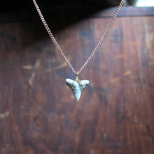 Fossil Shark Tooth choker necklace