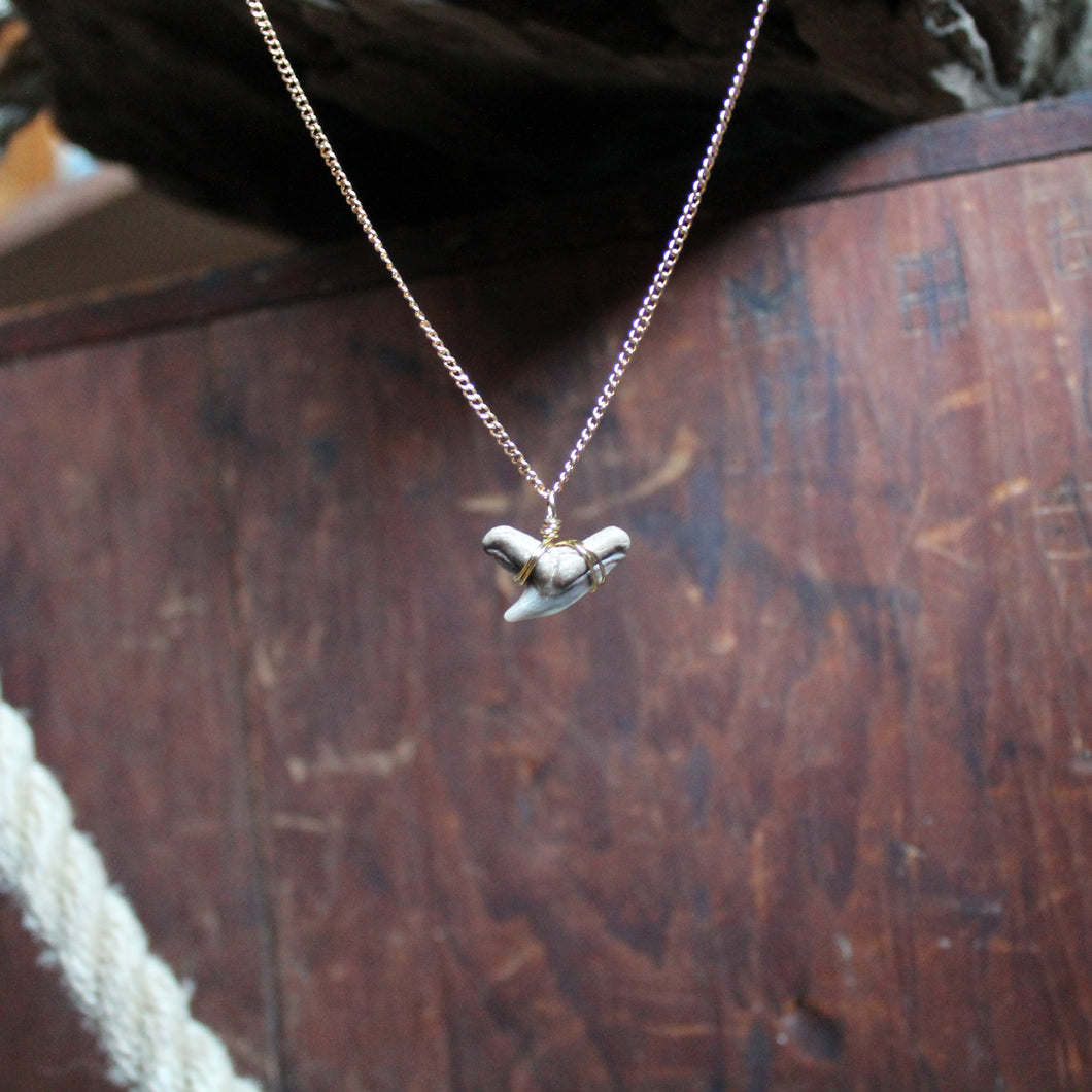 Shark Tooth necklace by RadCakes custom fossil jewelry