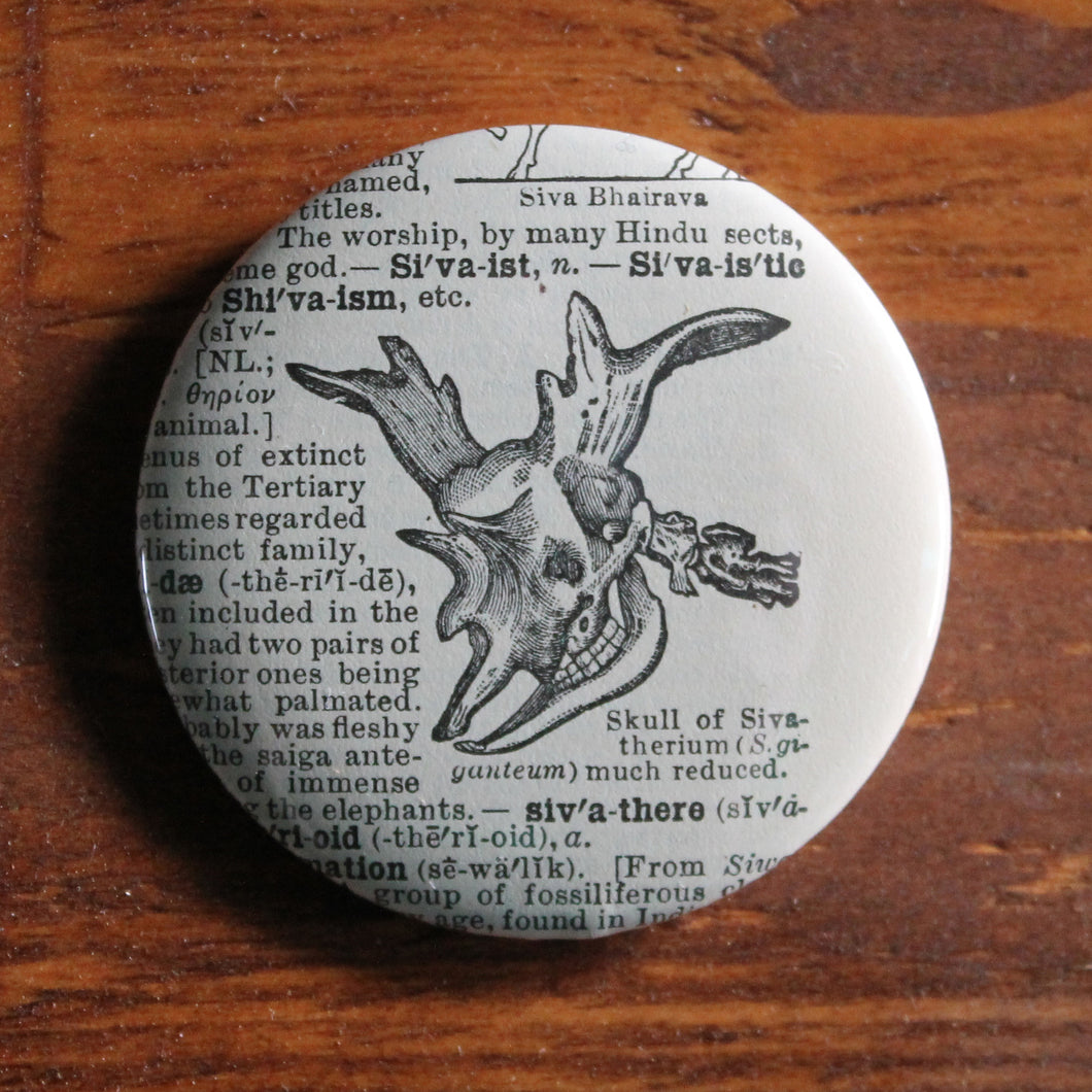 image of sivatherium skull old giraffe relative pinback button design by RadCakes