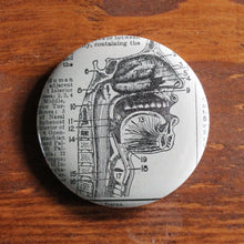 "Cross Section of Nose, Jaw, & Throat 2.25"" pinback button - RadCakes Shirt Printing"