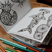 Radcakes Coloring Book #1