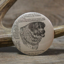 Newfoundland Dog pinback button for sale for Newfy pet lovers