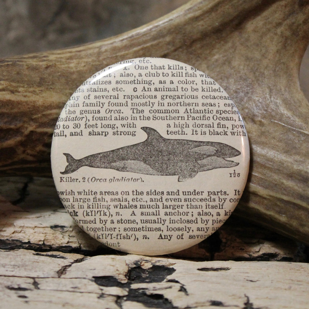 Killer Whale pinback button Orca marine mammal pin for sale