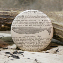 antique whale engraving design pinback button for sale