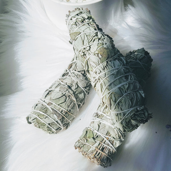 Sage Smudge Sticks - Willow Moon Shop