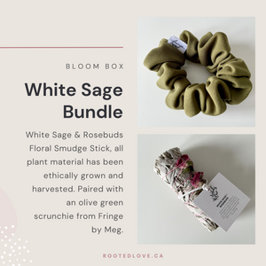 White Sage - Rooted Love Bloom Bundle