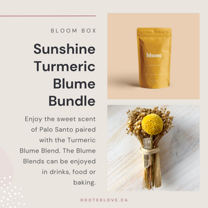 Sunshine Turmeric Blume Blend - Rooted Love Bloom Bundle