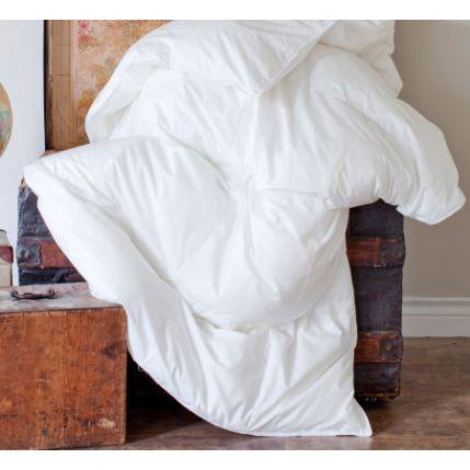 Silver Duck Down Travel Duvet