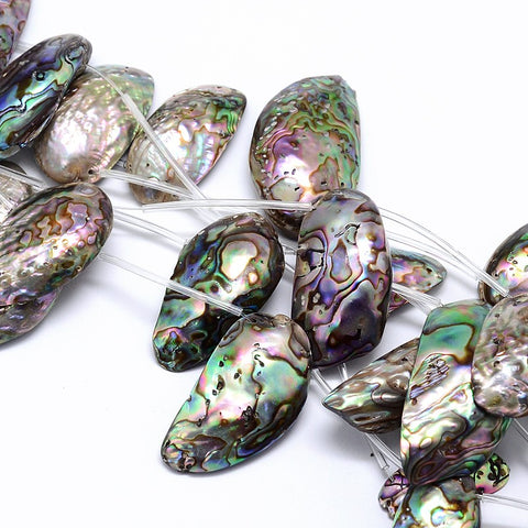 Strand of Paua Shell
