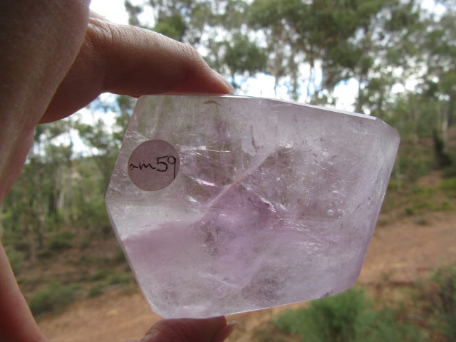 Amethyst Palm Crystal 59