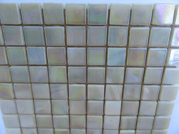 VGT248 Vibrant Glass Tile