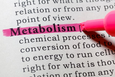 High metabolism rates can trigger night sweats