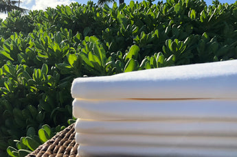 Eco-Disposable Pillowcases (Case of 50)