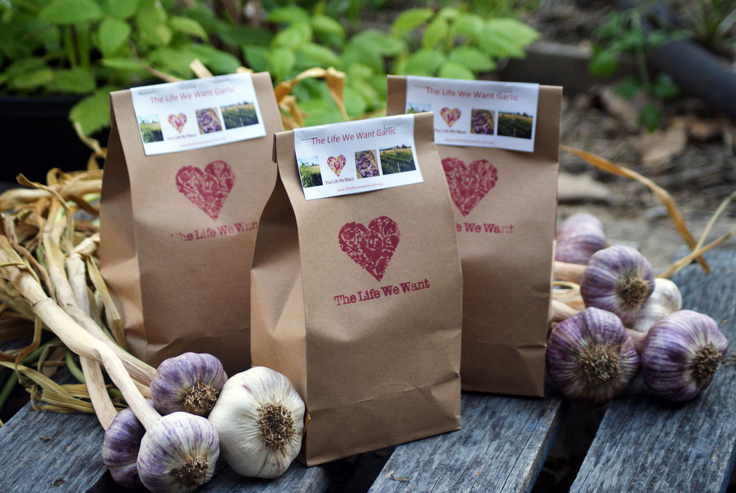 500g bag Garlic - Late Season Varieties