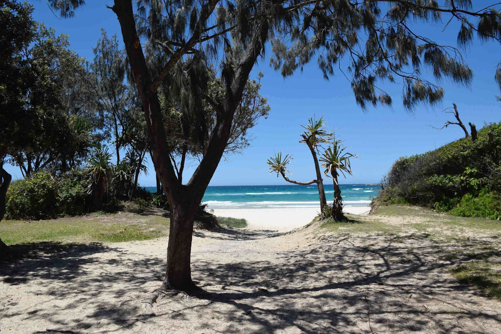 brisbane at summer time at the beach