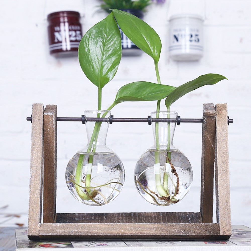 ... Glass Tabletop Vase With Wooden Tray For Hydroponic Plants ...