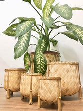 Load image into Gallery viewer, Veronica Bamboo planters set of 5