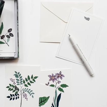 Notecards | Field Flowers - TheInkBucketstore