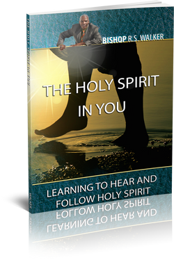 Holy Spirit In You (Paper Back)