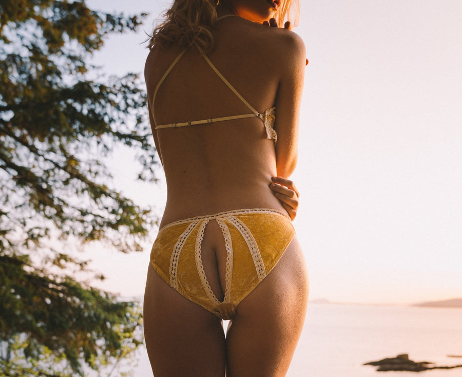 Lemon Meringue Silk Velvet Backless Undies