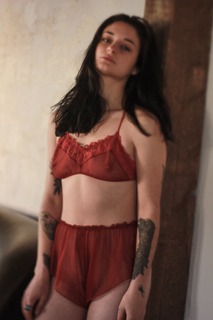 Be Mine Mesh Scarlet Red Lace Bralette