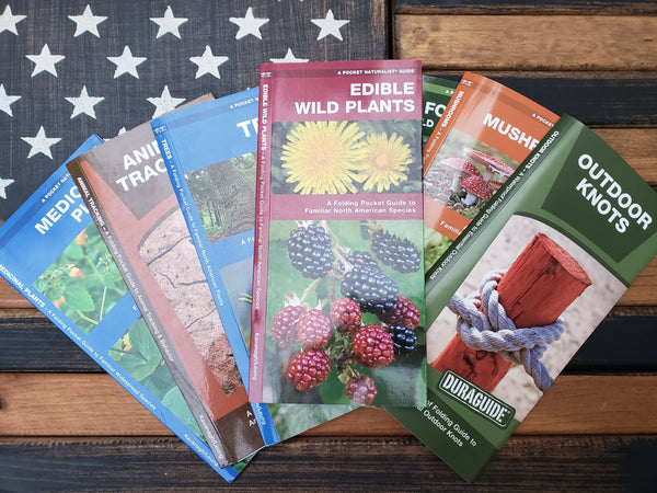 Edible Wild Plants (Laminated)