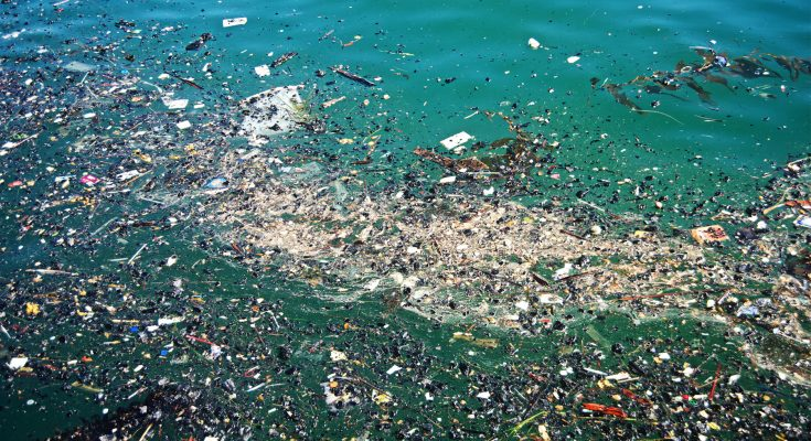 The Pacific Garbage Patch continues to grow!!