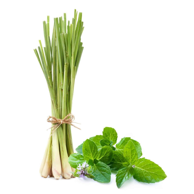 Thai Lemongrass–Mint Aged White Balsamic Vinegar