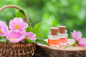 Your Guide to Natural Skin Care Ingredients