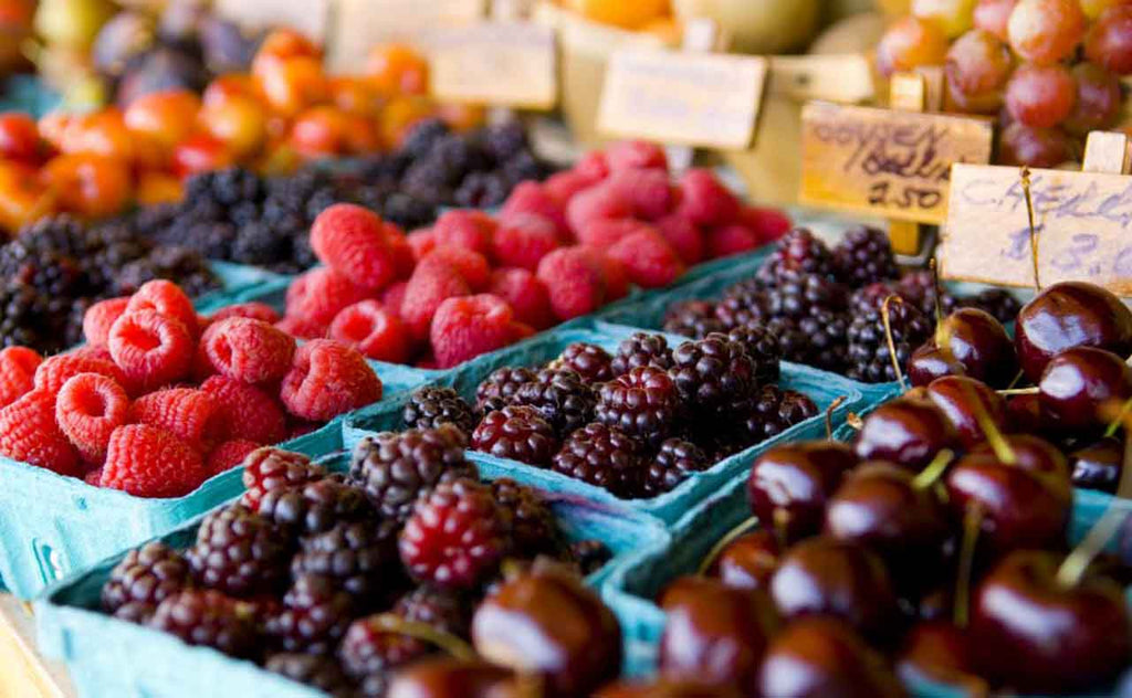 the importance of anti oxidants