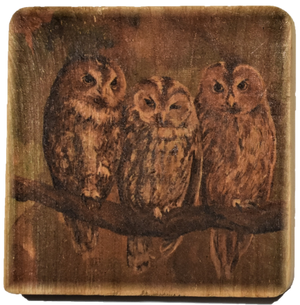 Rustic Wooden Set of Coasters (4) with Terri Palmer's Animal Art Reproductions
