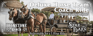 Deluxe Horse Team Coach Ride at Stone Gables Estate - Gift Certificate