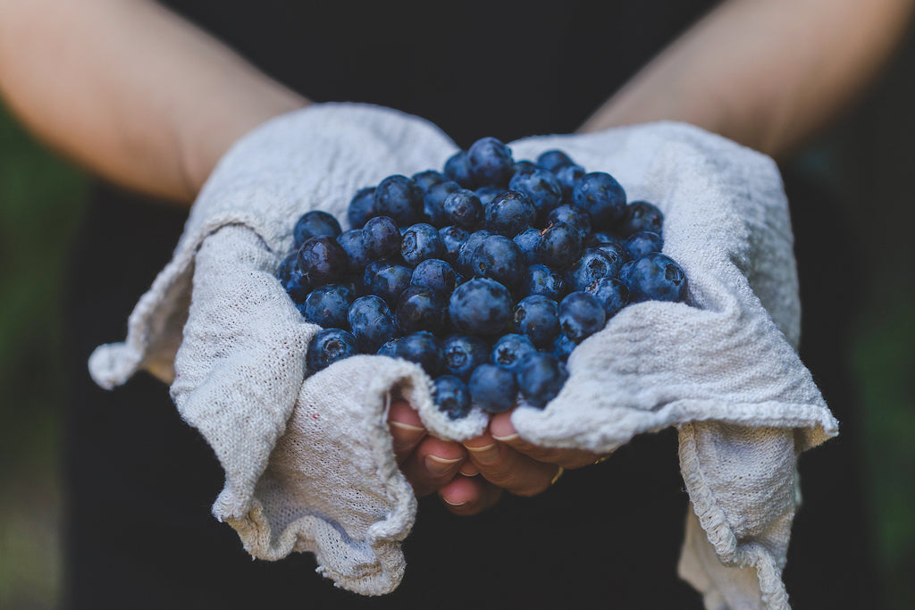 Here's Why You Need Blueberry Seed Oil in Your Skincare Routine