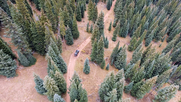 Free 4K Nature Stock Video: Aerial of Jeep Wrangler off Roading Through Forest