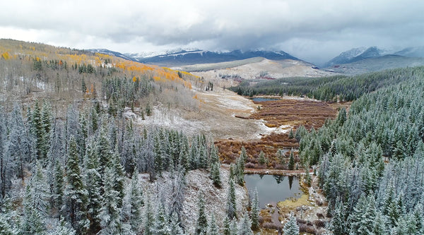Free 4K UHD Nature Stock Video: Autumn Snow in the Rocky Mountains