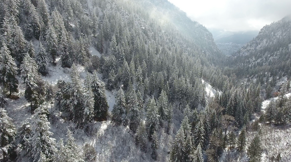 Free 4K Nature Stock Video: Drone flying through snow covered mountains