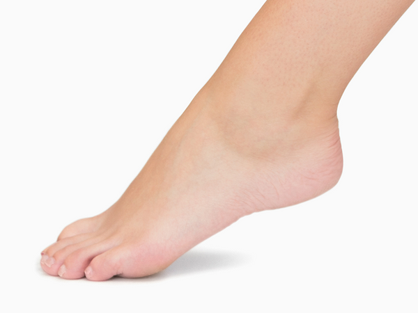 Ankles are a complex structure. Learn how to prevent common injuries!