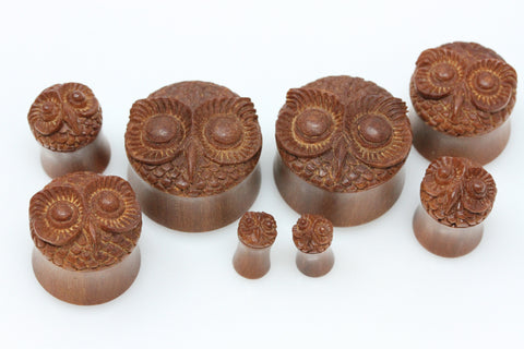 Owl Hand Carved Wood Plugs (Pair) - PA11