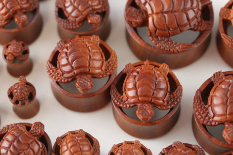 sea turtle plugs
