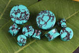 Black and Teal Howlite Plugs for stretched ears (Pair) - PB05
