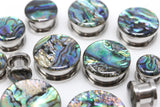 Abalone Shell Stainless Steel Plugs - Screw on Plugs (Pair) - PSS28