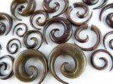 Carved Wood Ear Spirals - Sono (Pair) - D034