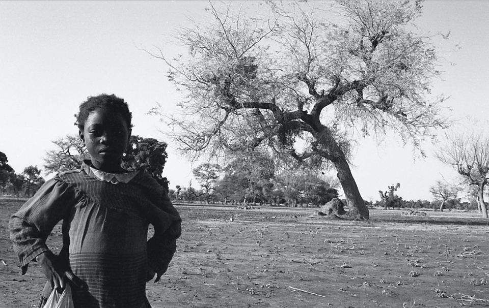 Standing Tall: Young Girl and Tree