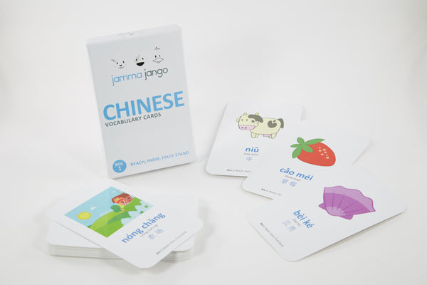 Vocabulary Flash Cards - Chinese